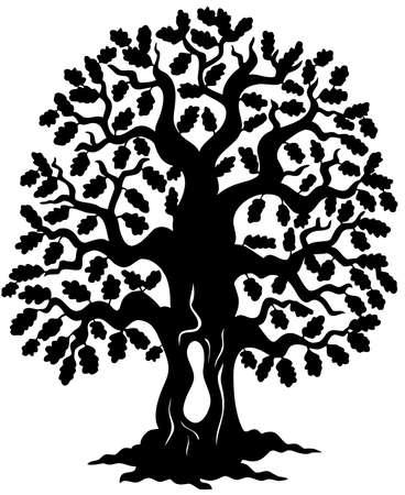 arboles blanco y negro: Silueta de roble