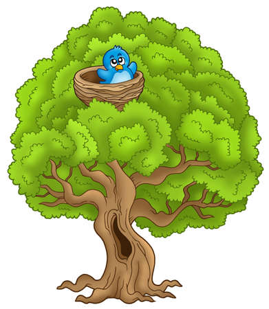 cartoon bird: Big tree with blue bird in nest - color illustration.