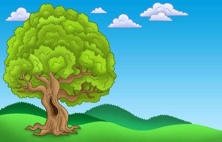 Landscape with big leafy tree - color illustration. illustration
