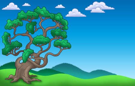 Landscape with big pine tree - color illustration. Stock Illustration - 6579463