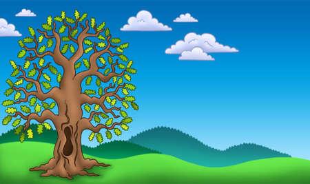 Landscape with oak tree - color illustration. Stock Illustration - 6579464