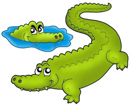 cocodrilos: Par de cocodrilos de dibujos animados - ilustraci�n de color.