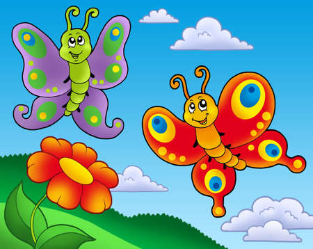 Two butterflies with red flower - color illustration.