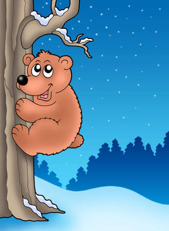 fur trees: Cute bear climbing tree - color illustration.