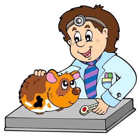 veterinarians: Small rodent at veterinarian Illustration