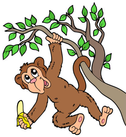 banana leaf: Monkey with banana on tree - illustration.