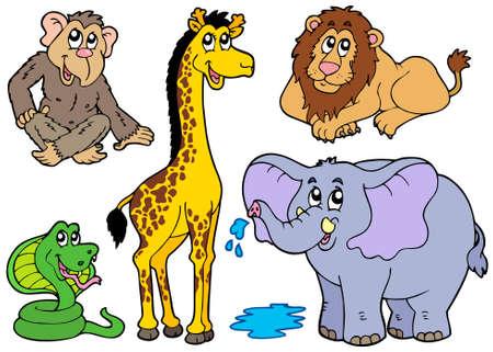 Verschillende Afrikaanse dieren - illustratie.