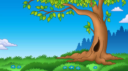 cartoon landscape: Leafy tree in grassy landscape - color illustration. Stock Photo