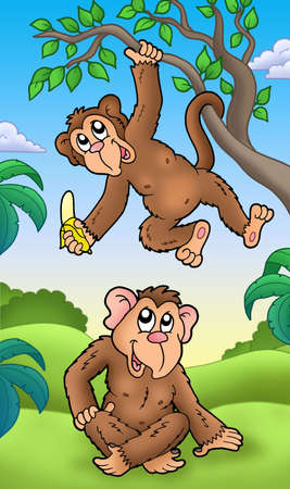 furry tail: Two cartoon monkeys - color illustration.