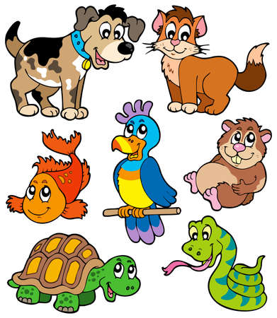 pets: Pet cartoons collection