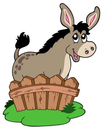 mula: Dibujos animados burro detr�s de valla - ilustraci�n vectorial.