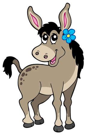 mammal: Cute donkey with flower - vector illustration. Illustration