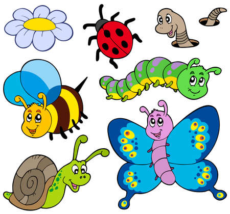 cartoon ladybug: Garden animals collection - vector illustration.