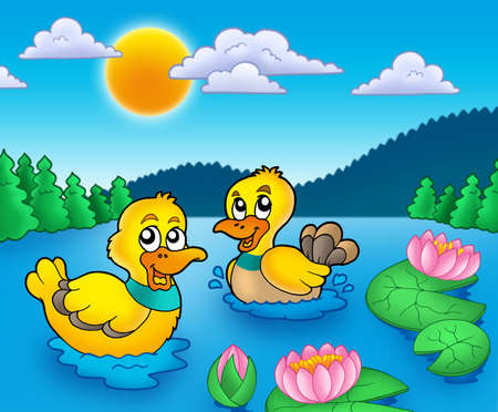 cartoon duck: Two ducks and water lillies - color illustration. Stock Photo