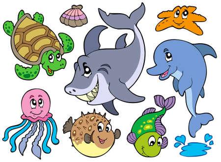 tortuga de caricatura: Colecci�n de animales del mar feliz