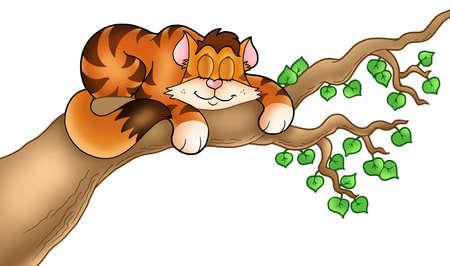 gato dibujo: Duerme el gato en la rama de un �rbol - ilustraci�n de color.  Foto de archivo