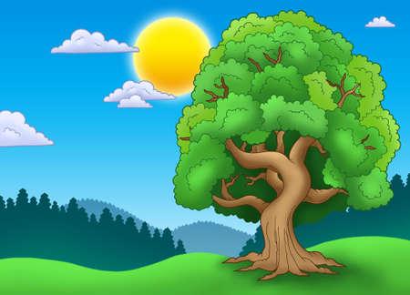 Groene groene boom in landschap - kleur illustratie.