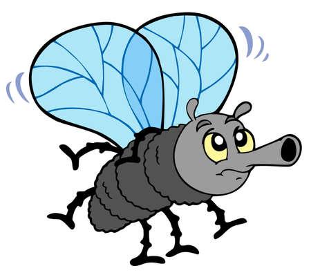 Cartoon fly on white background - illustration. Ilustracja
