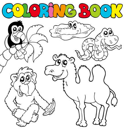 Coloring book with tropic animals 3 -illustration. Vector