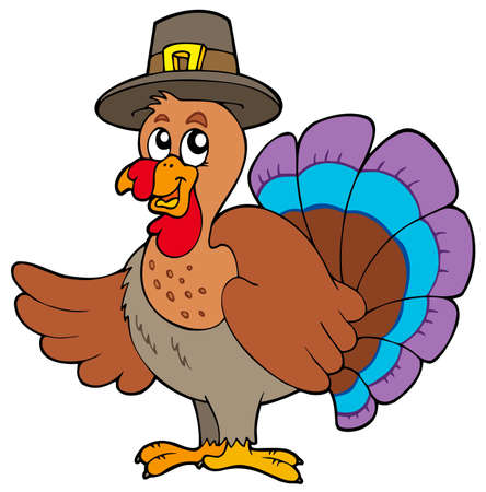 thanksgiving turkey: Thanksgiving turkey with hat - illustration.