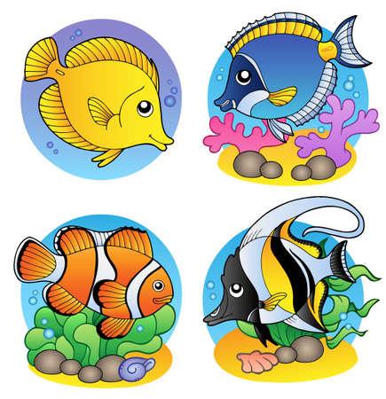 peces de agua salada: Varios peces corales - ilustraci�n.  Vectores