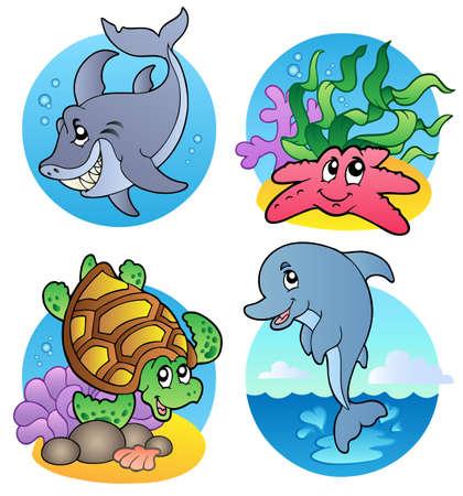 aquatic reptile: Various sea animals and fishes -  illustration. Illustration