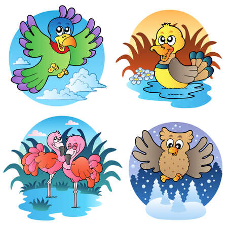 Various cute birds - illustration. Vector