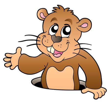 Cartoon groundhog lurking from hole - Vector illustration. Vector