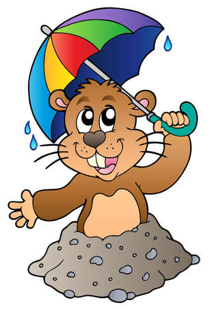 Cartoon groundhog with umbrella - Vector illustration. Vector