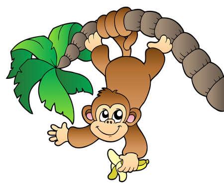 mono caricatura: Mono colgando de un árbol de Palma