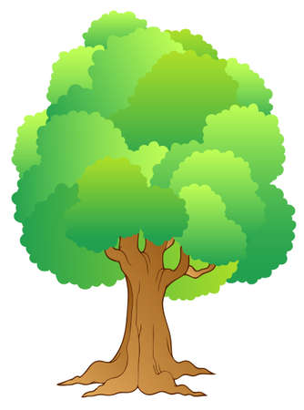 forest clipart: Big tree with green treetop Illustration