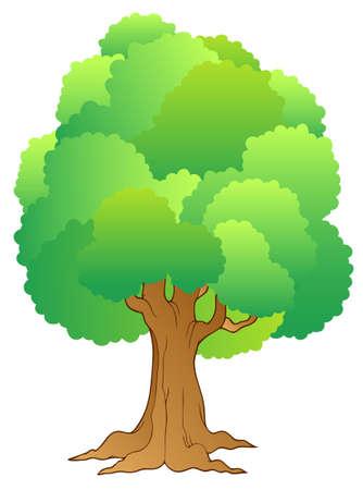 arboles de caricatura: �rbol grande con las copas de los �rboles verdes