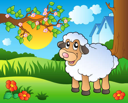 sheep cartoon: Cute sheep on spring meadow