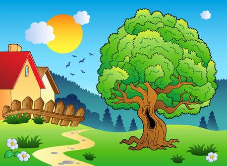 cartoon trees: Meadow with big leafy tree  Illustration