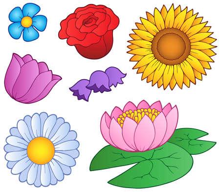 dessin fleur: Diverses fleurs ensemble - illustration vectorielle.