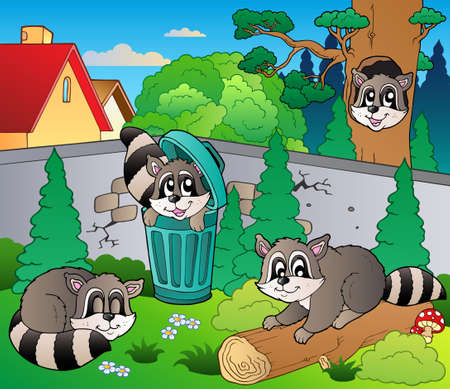 Backyard with cute racoons Stock Vector - 9864352