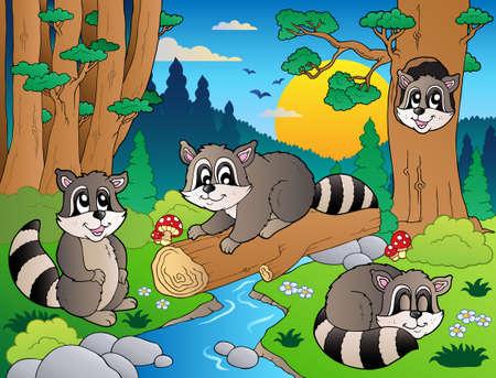 racoon: Forest sceny o różnych zwierząt