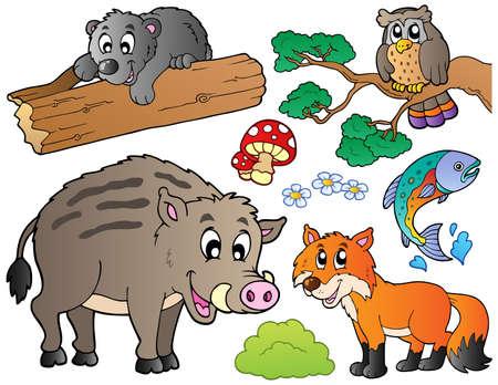 Ensemble de forêt caricature animaux Vecteurs