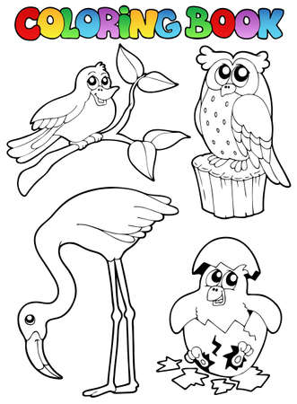 Coloring book with birds - vector illustration. Vector