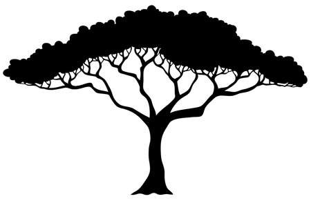 tall tree: Tropical tree silhouette - vector illustration.