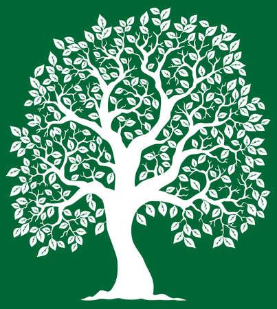 arboles frondosos: Árbol blanco sobre fondo verde 2 - ilustración vectorial. Vectores