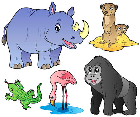 rhinoc�ros: Les animaux de zoo mis 1 - illustration vectorielle.