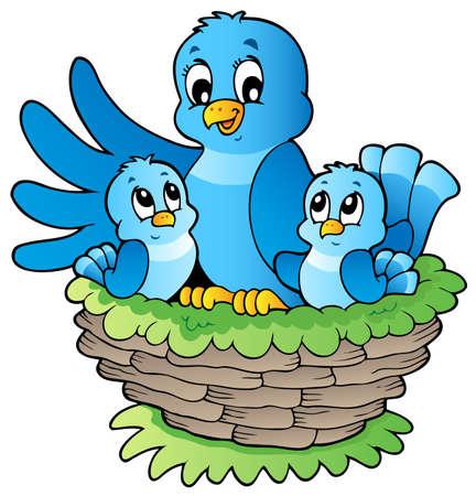 nido de pajaros: Aves de la imagen Tema 3 - ilustración vectorial. Vectores