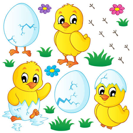 eggshells: Cute chickens collection - vector illustration  Illustration