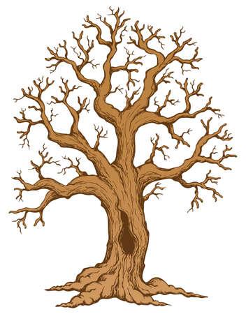 a bough: Tree theme drawing 2 Stock Photo