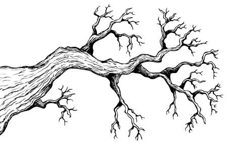 branching: Tree theme drawing 3
