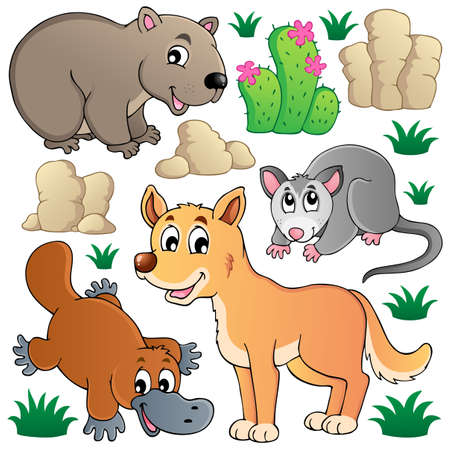 wombat: Fauna silvestres australianos set 1 - ilustraci�n vectorial