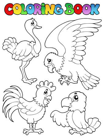 Coloring book bird image illustration  Vector