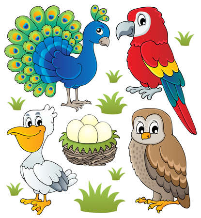 animal nest: Various birds theme set illustration