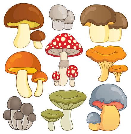 hongo: Mushroom colecci�n Tema 1 - ilustraci�n vectorial